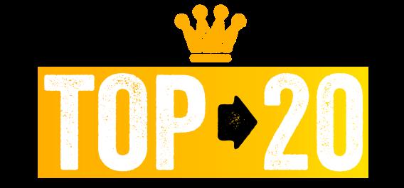 LOGO TOP 20 bannière site web